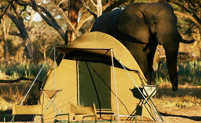 3 Days Chobe Camping Safari