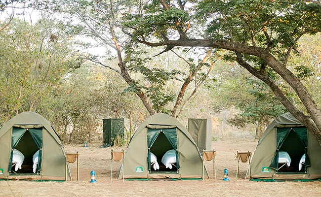 7 Days Accommodated Safari