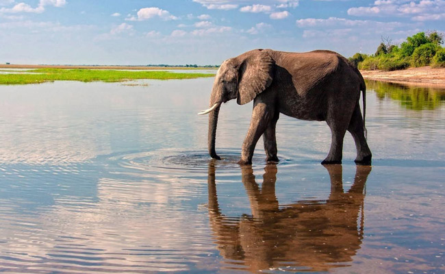Victoria Falls & hwange holiday packages
