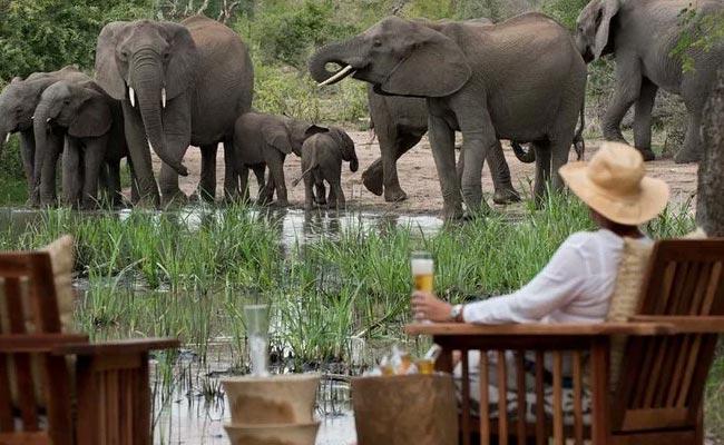 9 Days South Africa Luxury Safari