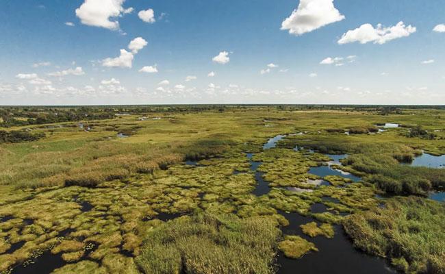 Okavango day trip
