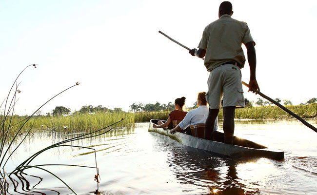 Maun Okavango delta Botswana